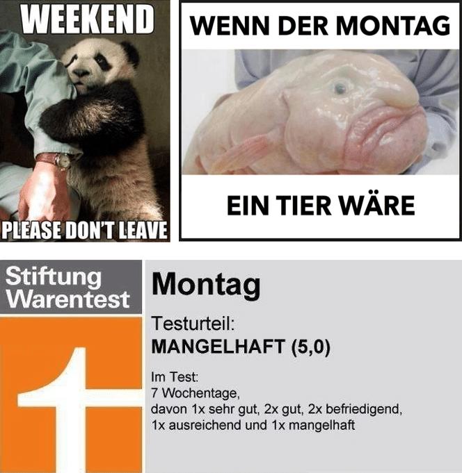 Montagswitze
